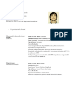 Curriculum Vitae, Diego Bonino