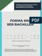 FORMA_SERBACHILLER_2017_CUESTIONARIX.pdf