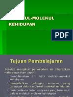 MOLEKUL-MOLEKUL KEHIDUPAN