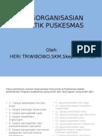 Pengorganisasian Praktik Puskesmas (2)