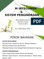 3 Sistem Integumen & Pengindraan Anatomi 2013 FINAL1
