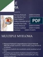 12. Multiple Myeloma