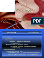 CNS Blood Supply