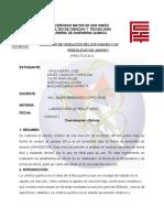 Informe 2 Pre Hecho