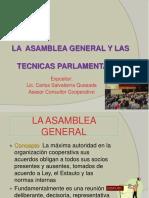 La Asamblea General y Las Técnicas Complementarias