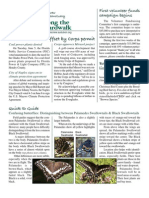 July 2007 Along the Boardwalk Newsletter Corkscrew Swamp Sanctuary
