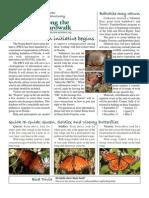 September 2008 Along the Boardwalk Newsletter Corkscrew Swamp Sanctuary