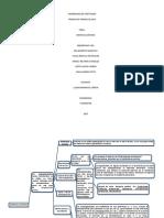 Aminoglucósidos Mapa Conceptual