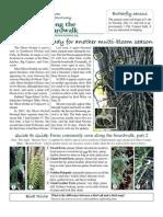 July 2009 Along the Boardwalk Newsletter Corkscrew Swamp Sanctuary