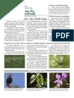 July 2010 Along the Boardwalk Newsletter Corkscrew Swamp Sanctuary