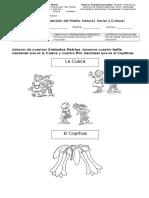 Guía de Comprensión del Medio 1° (Baile Nacional y Flor Nacional).doc