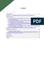 Dimensionarea ciclului de exploatare al Firmei