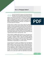 DIDP 13.pdf