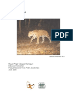 Miguel Guatemala (PDF)