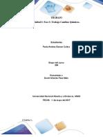 Trabajo Colaborativo – Unidad 3 Fase 3 Trabajo Cambios Químicos (2)