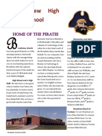 pirate flyer