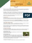 EL CIRA.pdf