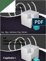 SISTEMAS ORGANIZACIONALES .pptx