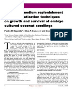 Aklimatization of Coconut