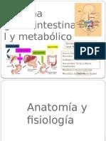 Sistema Gastrointestinal y Metabolico