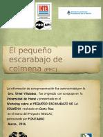 Presentación ESCARABAJO-REDLAC