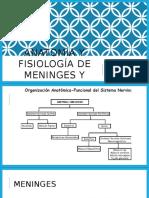 Anatomía y Fisiología de Meninges y Lcr_9b
