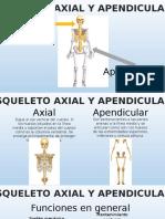 Esqueleto Axial y Apendicular