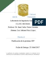 Reporte 5 Purificacion de La Proteina Gfp