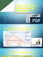 Evolucion Temporal de Farmacos en El Organismo (1)