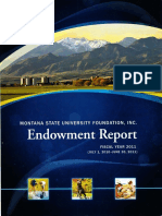 MSUF Endowment Report FY2011