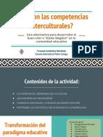 Profesores- Competencias Interculturales (1)