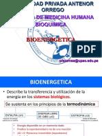 bioenergetica 2.pdf