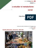 metabolismo social