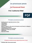 aula_01_-_princpios_processuais_penais