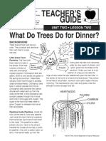 Trees Lesson