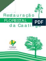 Reflorestamento -restauracao-florestal-da-caatinga.pdf
