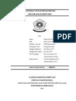 Laporan Program Mandiri