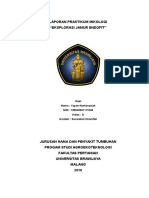 326097780-Mikologi-jamur-endofit.docx