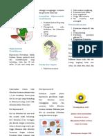 Leaflet Hiperemesis Gravidarum