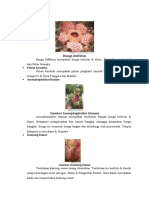 Bunga Rafflesia