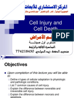 Cell Injury and Cell Death 1