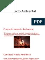 Formulacion_y_Evaluacion_de_Proyectos_6-_Impacto_Ambiental__45337__ (1)