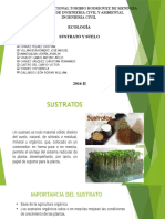 Diapositivas Sustrato y Suelos