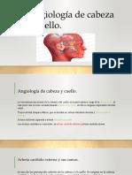 Angiología de Cabeza y Cuello para estudiar