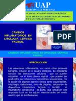 Cambios Inflamatorios en Citologia Cervicovaginal Srl - Jrd 2016