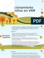 Funcionamiento Cognitivo y Desarrollo Psicosocial en VAM