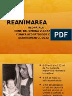 C2 REANIM NN NOV 2016-1.pptx