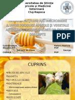 Pop Patricia Preclinici Testarea Acțiunii Antimicrobiene a Unor Produse Apicole Și Vegetale Asupra Microorganismelor Izolate Din Lapte