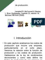 Costos de Produccion2008 09