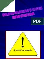 Imagistica-in-nefrologie.pdf